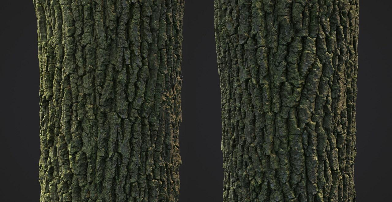 Бесплатные текстуры дерева