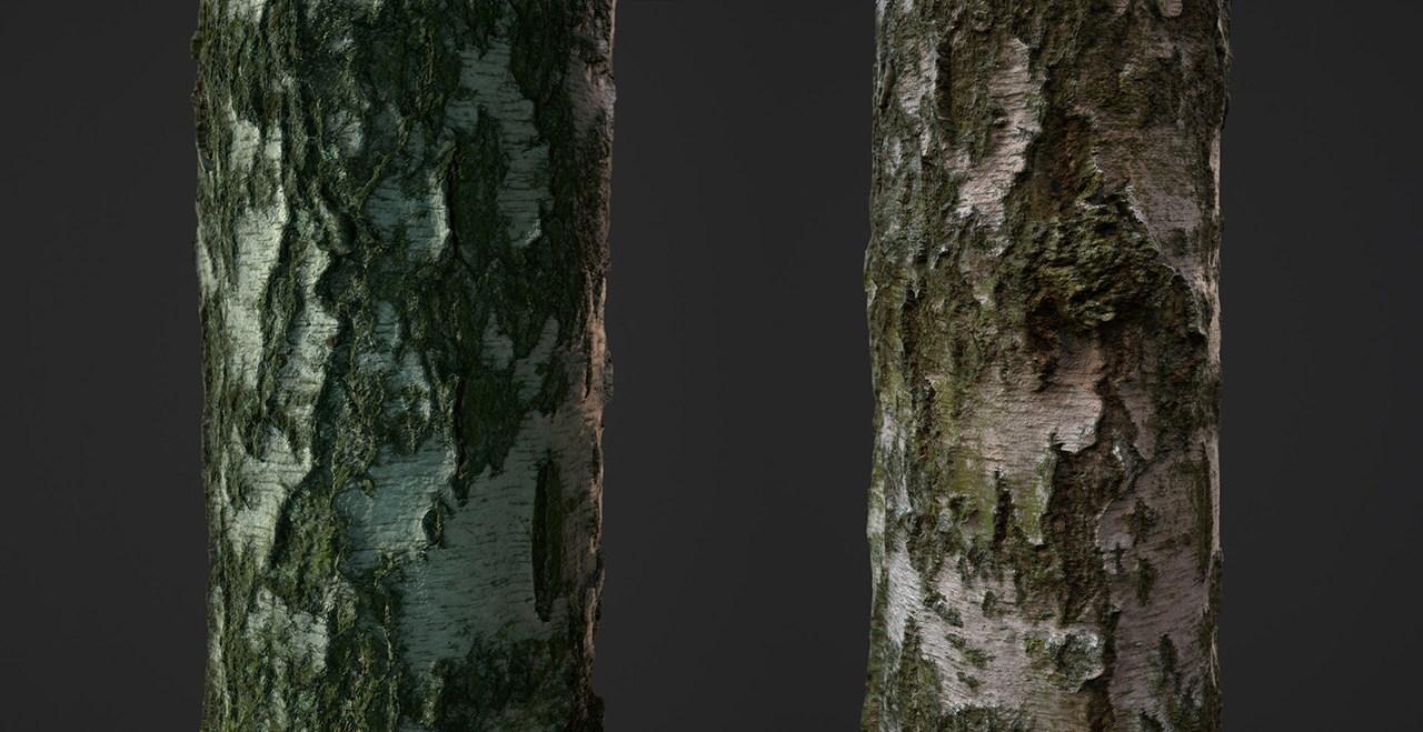 Текстуры дерева бесплатно