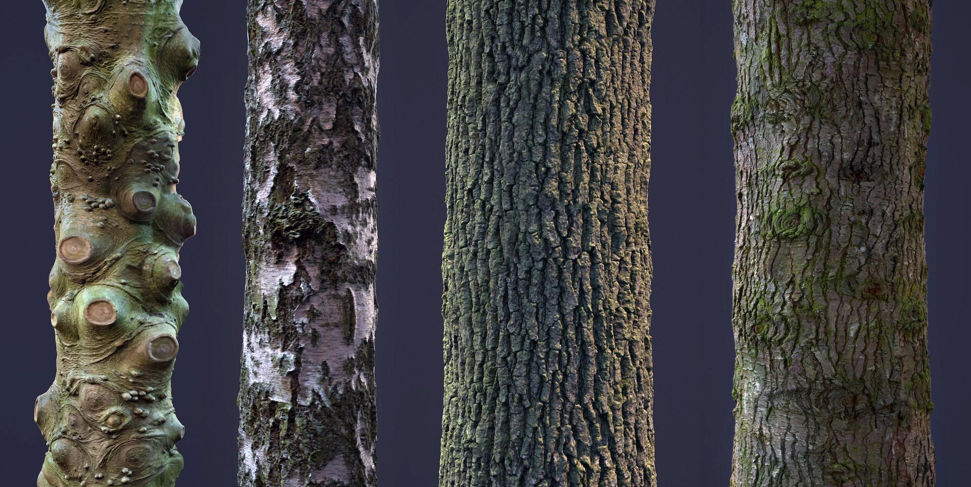 Бесплатные бесшовные текстуры коры дерева высокого качества